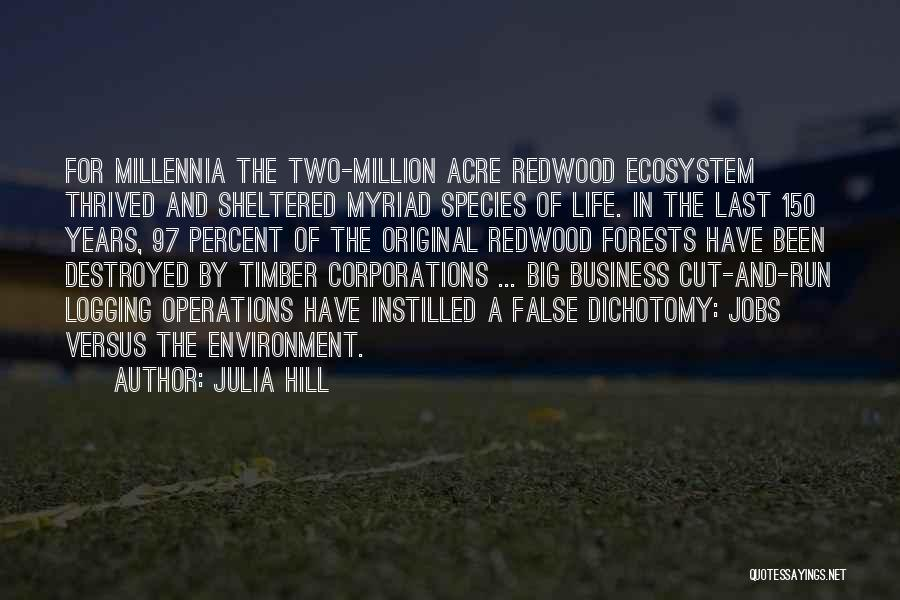 Sheltered Life Quotes By Julia Hill