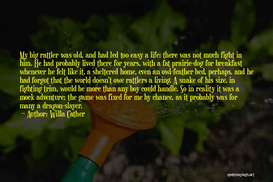 Sheltered Life Quotes By Willa Cather