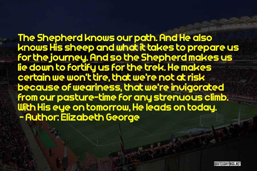 Shepherd And Sheep Quotes By Elizabeth George