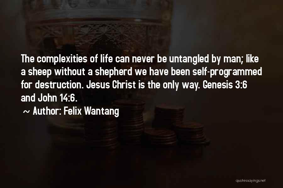 Shepherd And Sheep Quotes By Felix Wantang