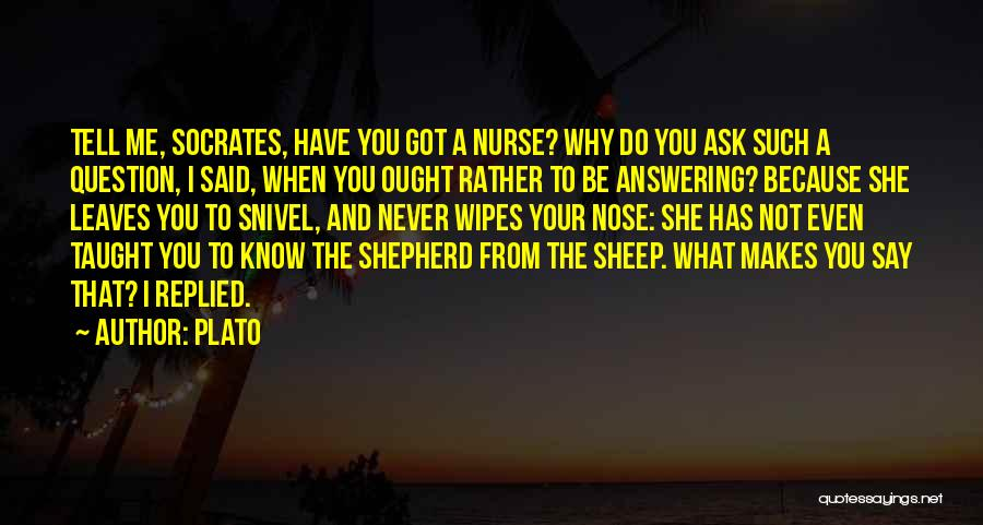 Shepherd And Sheep Quotes By Plato
