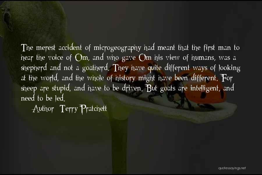 Shepherd And Sheep Quotes By Terry Pratchett
