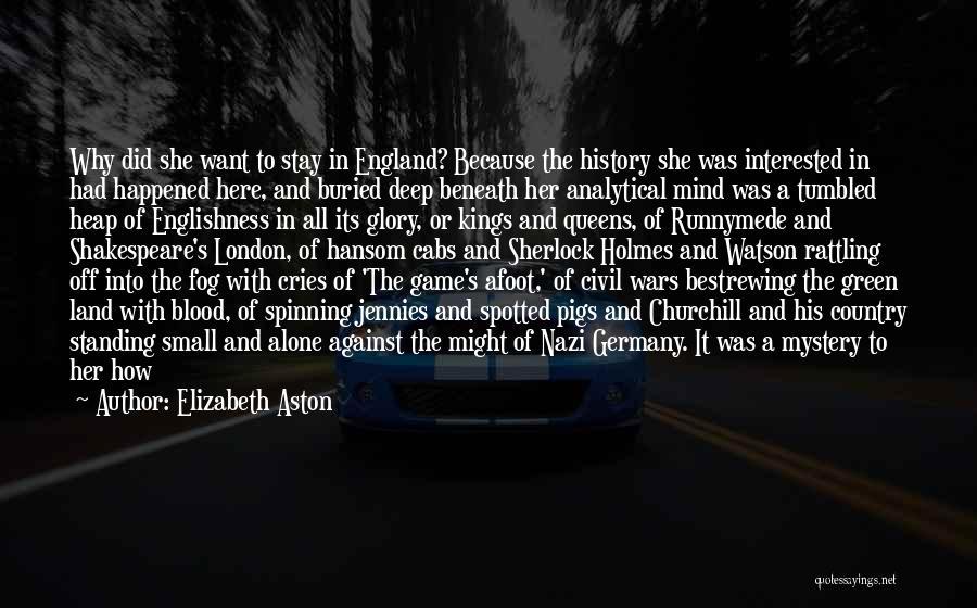 Sherlock's Quotes By Elizabeth Aston