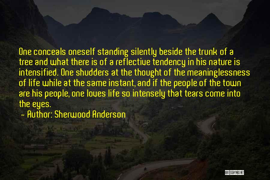 Sherwood Anderson Quotes 142417