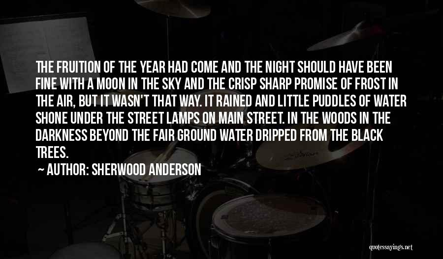 Sherwood Anderson Quotes 2023140