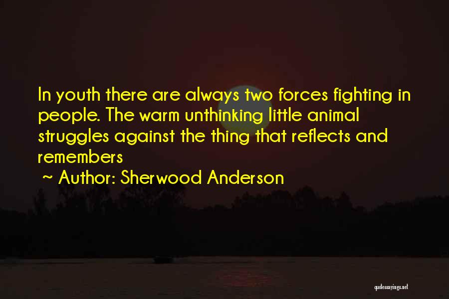 Sherwood Anderson Quotes 2035759