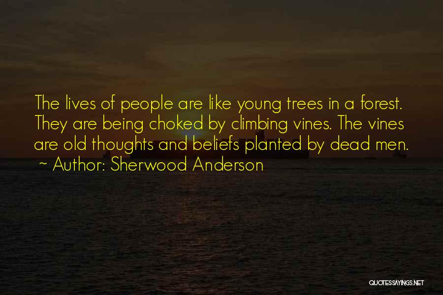 Sherwood Anderson Quotes 2067325