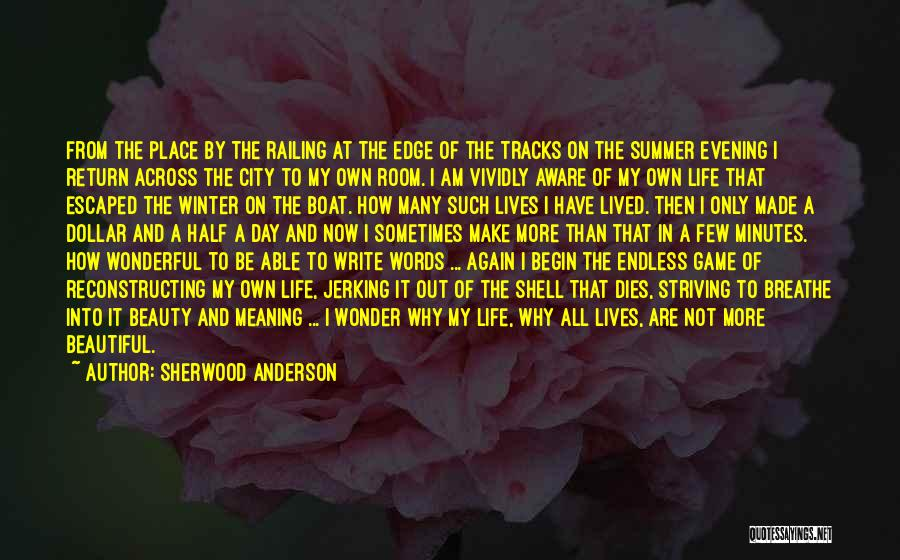 Sherwood Anderson Quotes 893871
