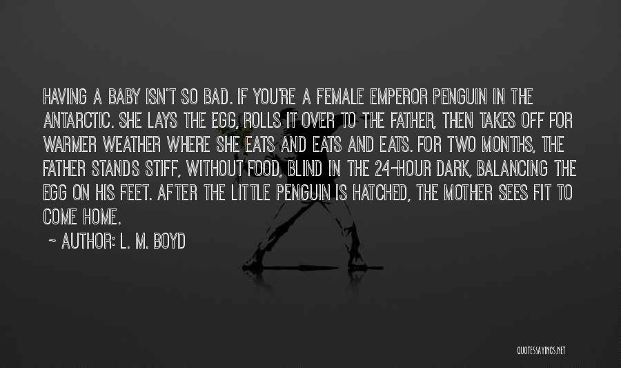 She's Having A Baby Quotes By L. M. Boyd