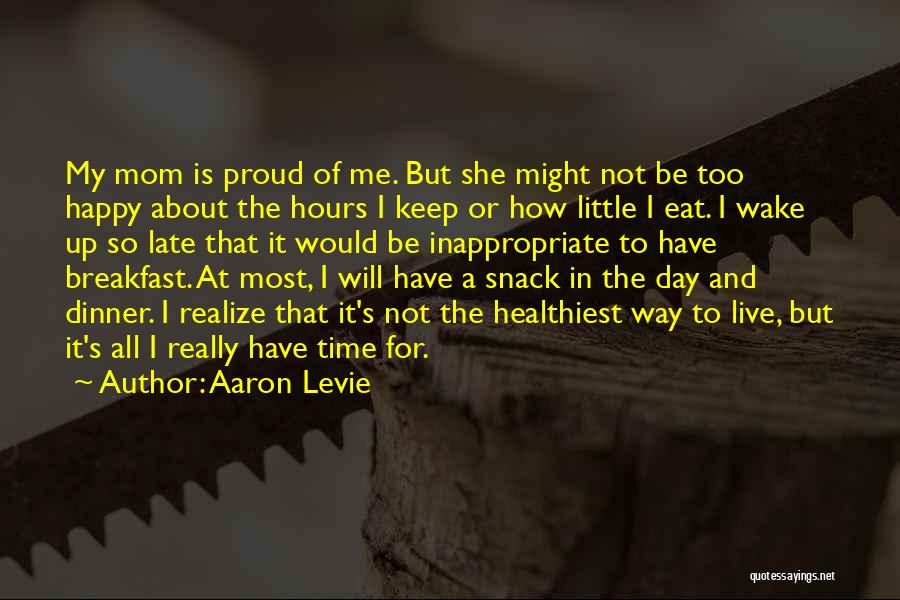 She's Not Proud Of Me Quotes By Aaron Levie