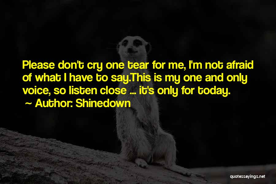 Shinedown Quotes 2154256