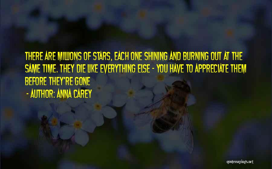 Shining Stars Quotes By Anna Carey