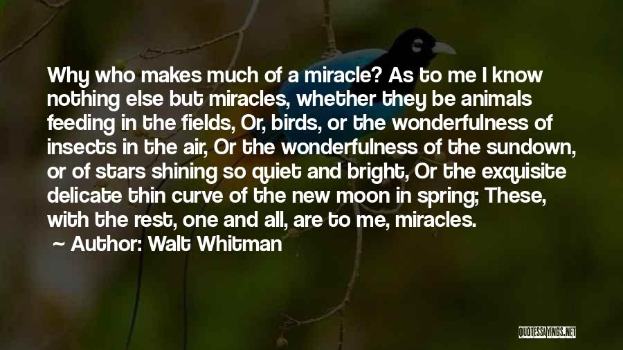 Shining Stars Quotes By Walt Whitman