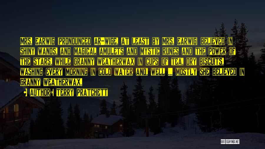 Shiny Morning Quotes By Terry Pratchett