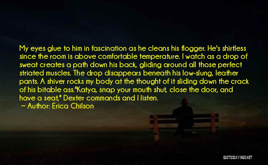 Shirtless Quotes By Erica Chilson