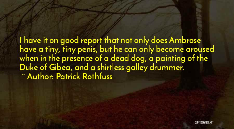 Shirtless Quotes By Patrick Rothfuss