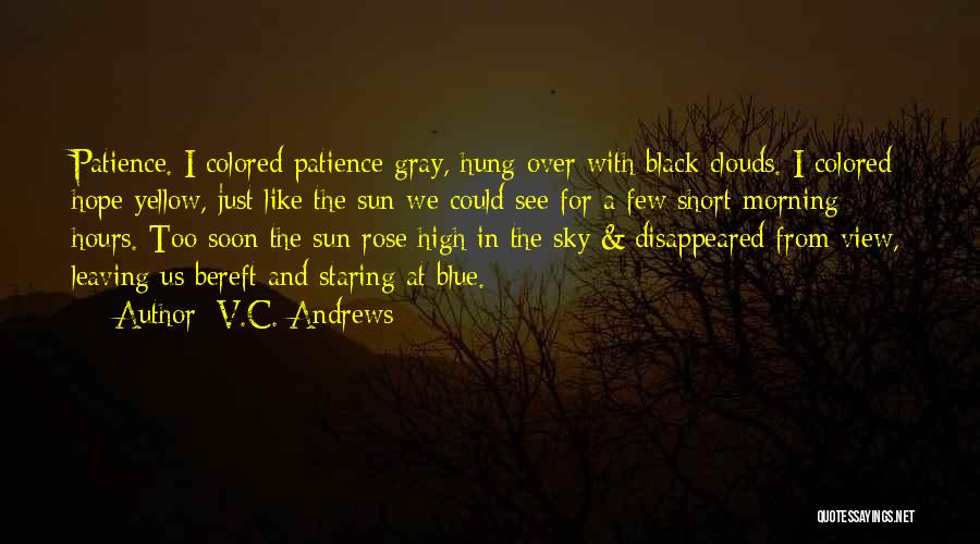 Short Blue Sky Quotes By V.C. Andrews