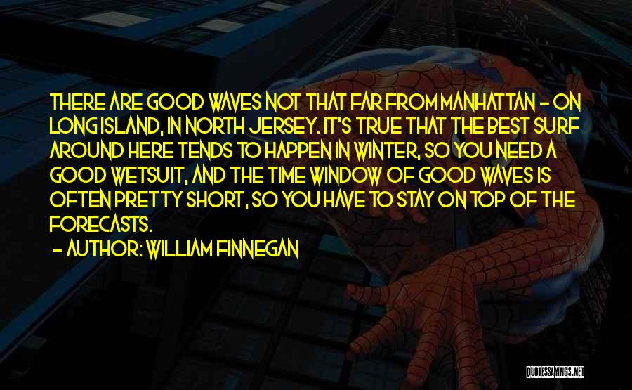 Short Good Time Quotes By William Finnegan