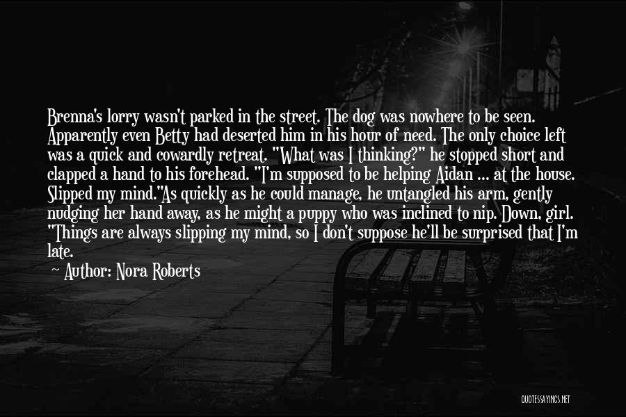 Short Quick Quotes By Nora Roberts