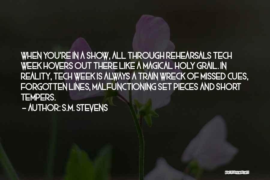 Short Theatre Quotes By S.M. Stevens