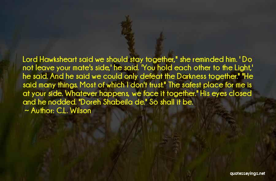 Should I Leave Quotes By C.L. Wilson