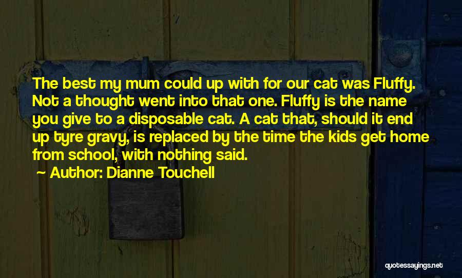 Should Not Give Up Quotes By Dianne Touchell