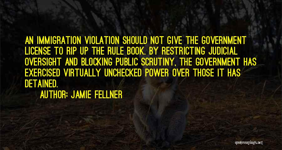 Should Not Give Up Quotes By Jamie Fellner