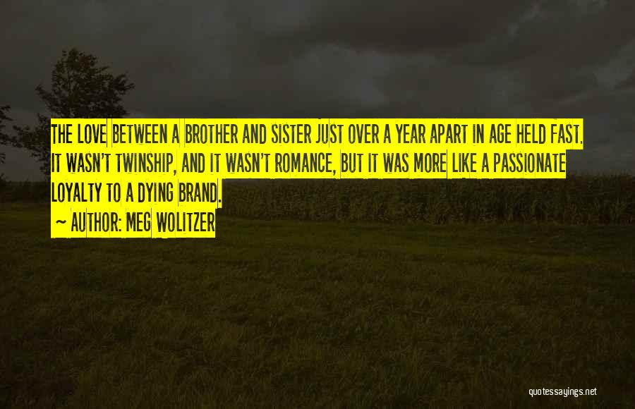 Sibling Love Quotes By Meg Wolitzer