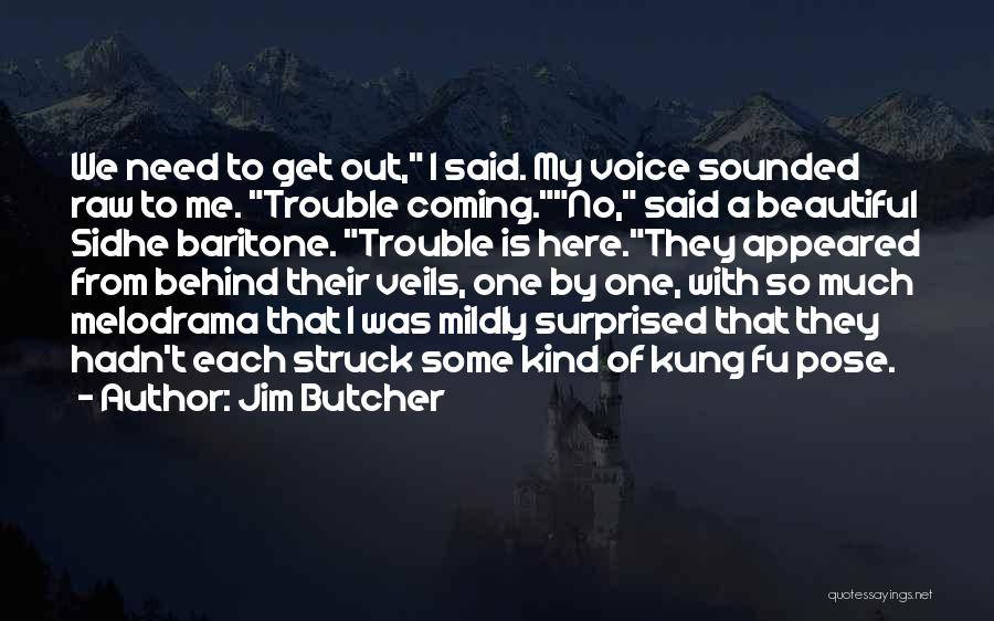 Sidhe Quotes By Jim Butcher