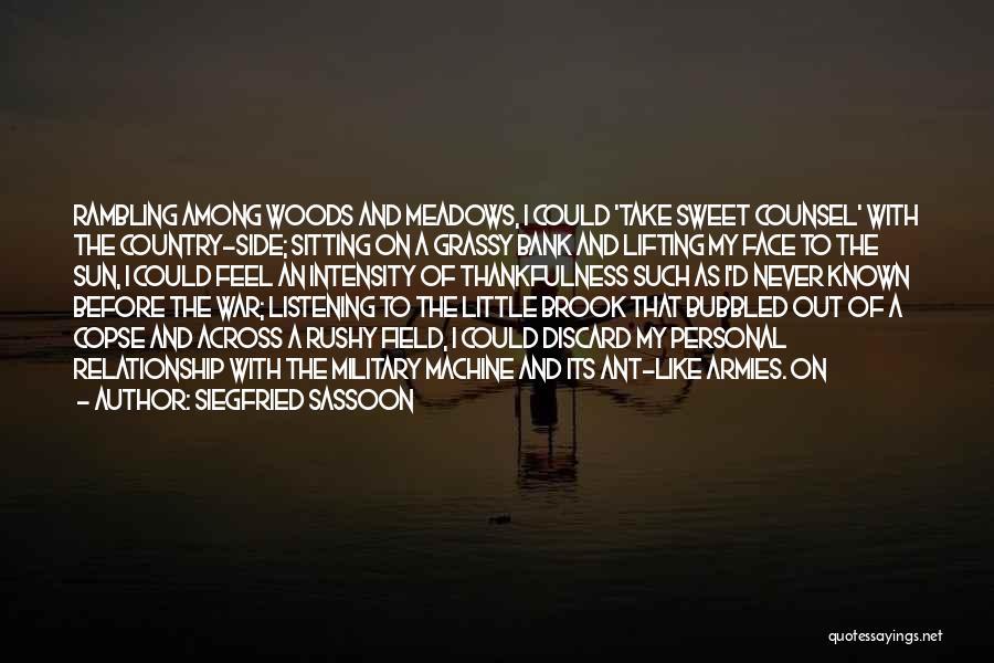 Siegfried Sassoon Quotes 1457181