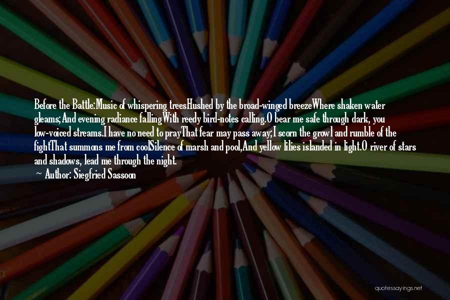 Siegfried Sassoon Quotes 560673