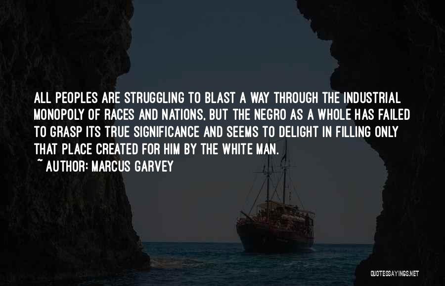 Significance Quotes By Marcus Garvey