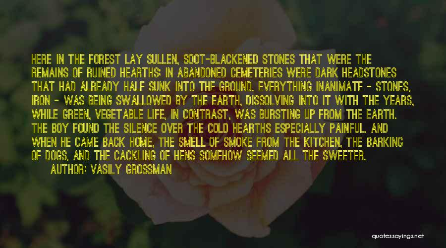 Silence Painful Quotes By Vasily Grossman