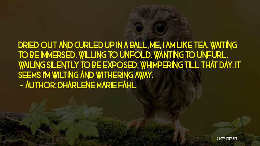 Silently Loving Someone Quotes By Dharlene Marie Fahl
