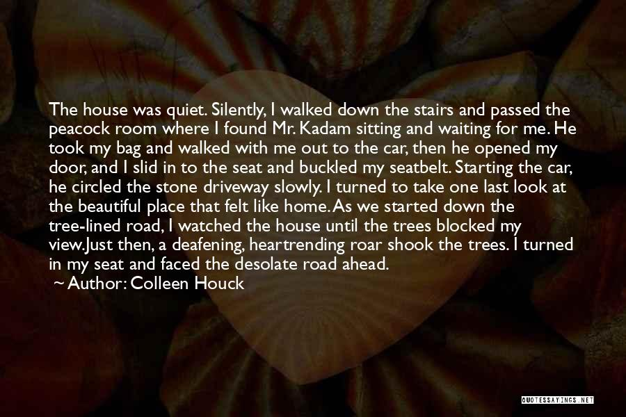 Silently Waiting Quotes By Colleen Houck