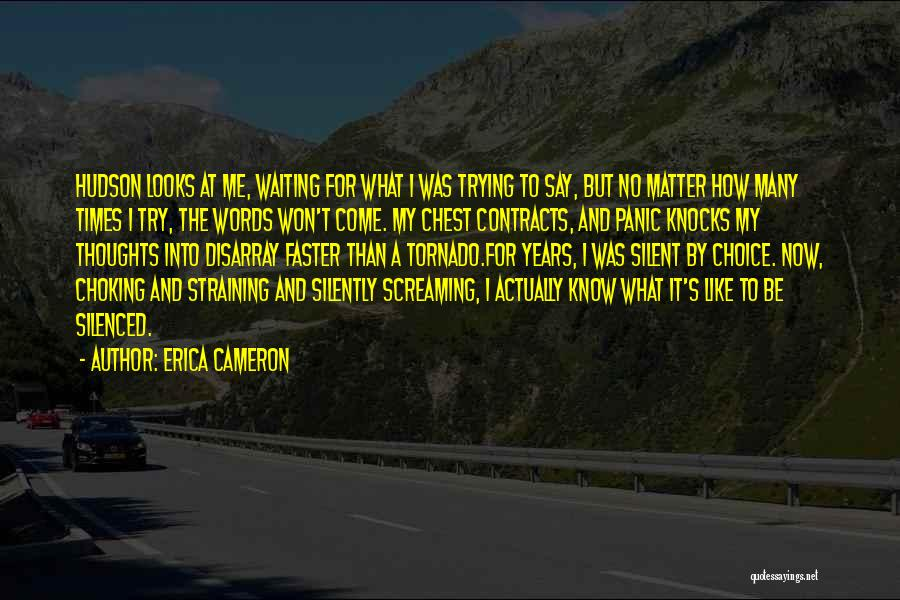 Silently Waiting Quotes By Erica Cameron