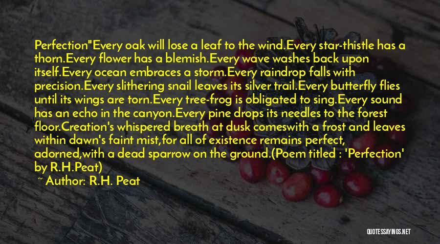 Silver Mist Quotes By R.H. Peat
