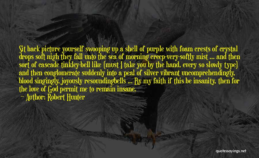 Silver Mist Quotes By Robert Hunter