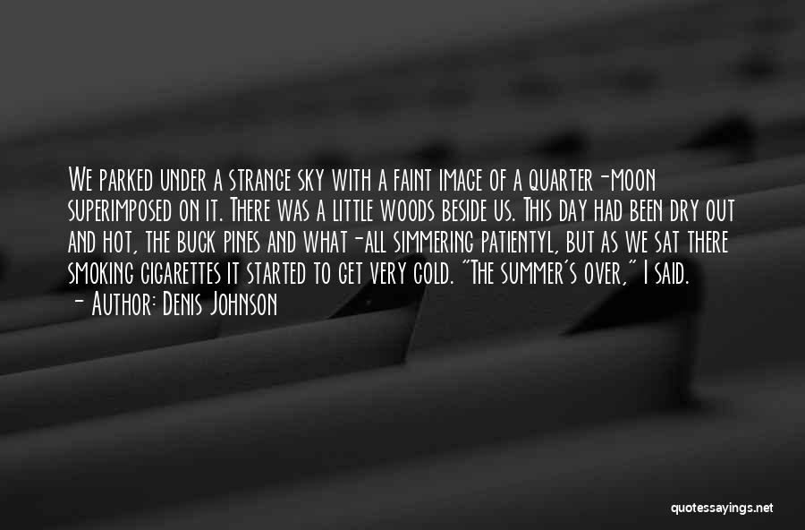 Simmering Quotes By Denis Johnson