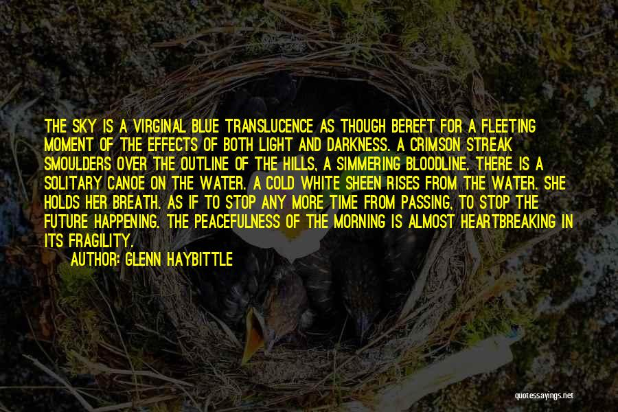 Simmering Quotes By Glenn Haybittle