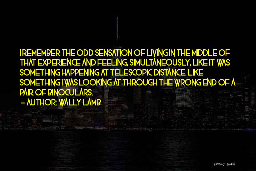 Simultaneously Quotes By Wally Lamb