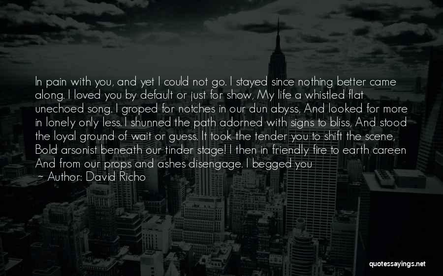 Since You Came In My Life Quotes By David Richo