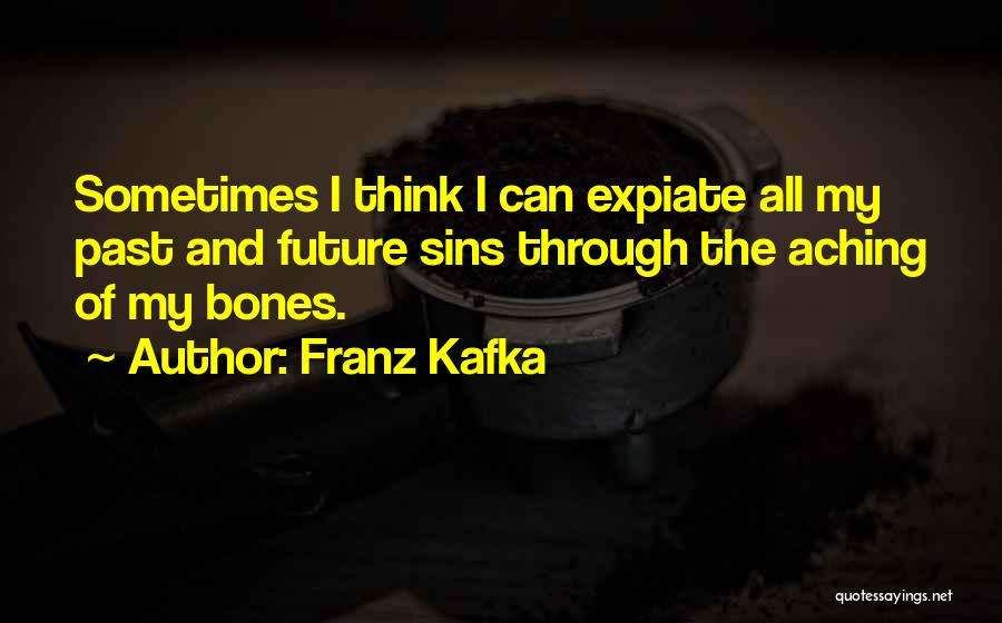 Sins Of The Past Quotes By Franz Kafka