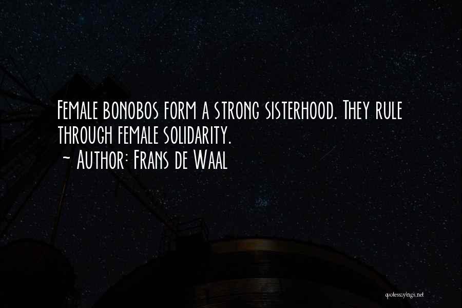 Sisterhood Quotes By Frans De Waal