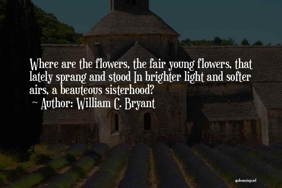 Sisterhood Quotes By William C. Bryant