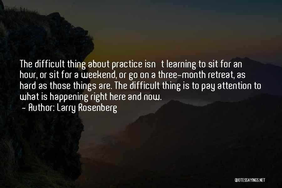 Sit Quotes By Larry Rosenberg