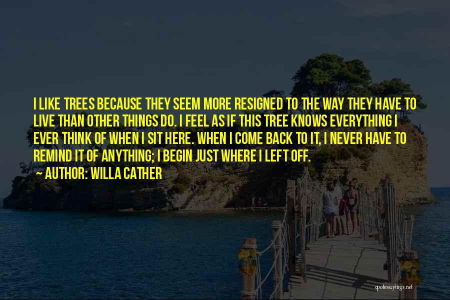 Sit Quotes By Willa Cather