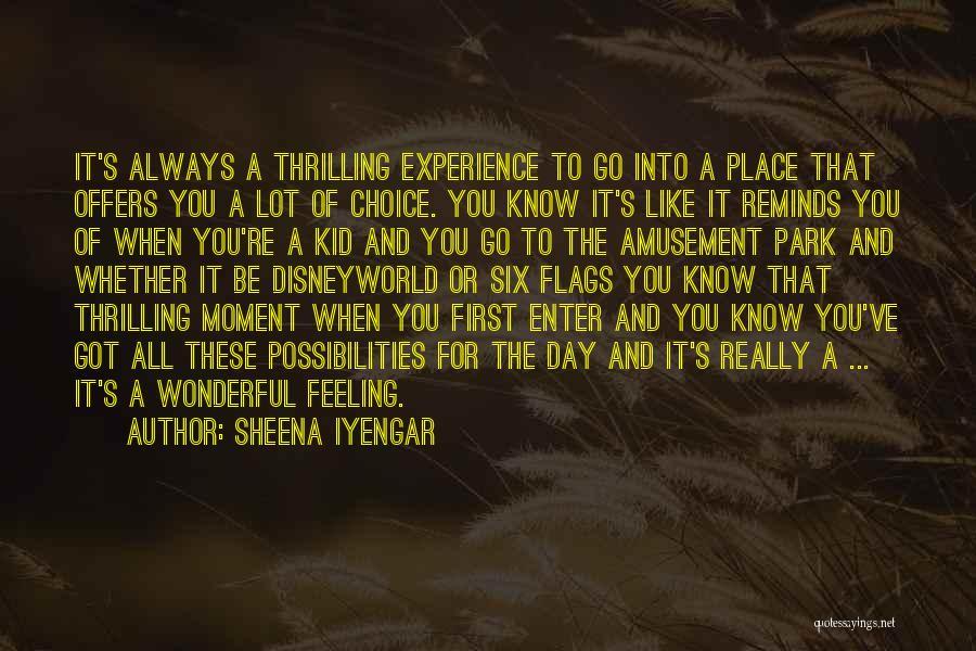 Six Flags Quotes By Sheena Iyengar