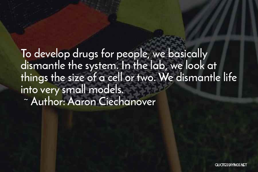 Size 0 Models Quotes By Aaron Ciechanover