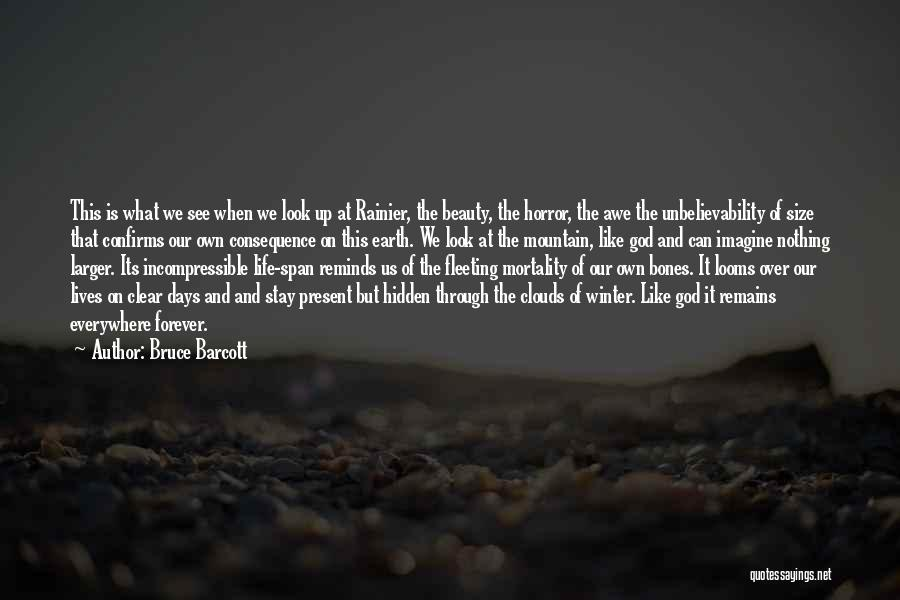 Size And Beauty Quotes By Bruce Barcott